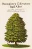 Piantagione e coltivazione degli alberi