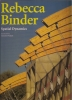 Rebecca Binder: spatial dynamics