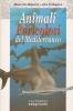 Animali pericolosi del mediterraneo