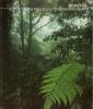 Borneo: le grandi distese selvagge