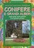 Conifere e grandi alberi negli spazi verdi pubblici e nei giardini privati