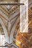Echi Albertiani: Chiese a navata unica nella cultura architettonica della Lombardia sforzesca