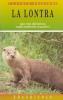 La lontra: una vita silenziosa negli ambienti acquatici