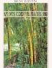 Verde di bambù